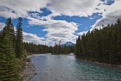在pipestone河附近的banff Lake Louise 图库摄影