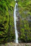 在Pipiwai足迹的头的著名Waimoku秋天瀑布,在路的七个神圣的水池上向哈纳 毛伊,夏威夷 图库摄影