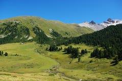 在piz sesvenna switzerlan谷附近的高山 免版税图库摄影