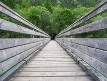 在Plansee的桥梁在奥地利 库存图片