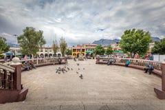 在Plaza De阿玛斯,秘鲁,南美附近的纪念碑 免版税库存图片