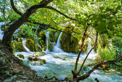 在Plitvice国家公园克罗地亚的美丽的小瀑布 库存照片