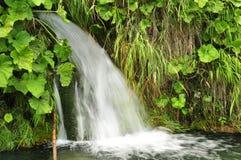 在Plitvice湖克罗地亚的瀑布 免版税库存图片