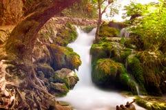 在Plitvice湖的瀑布 免版税图库摄影