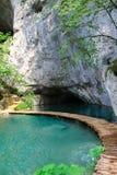 洞在Plitvice湖,克罗地亚 库存图片