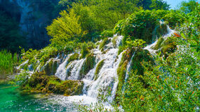 在Plitvice湖6的瀑布 免版税库存照片