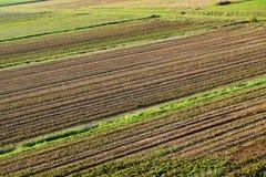 在Po谷的农村风景-意大利12 免版税图库摄影