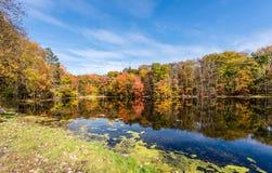 在Pocono山的秋天场面 库存图片