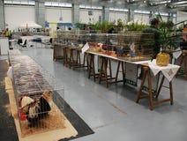 在Pollice Verde的禽畜笼子 库存照片