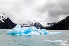 在Portage湖的冰山 免版税图库摄影
