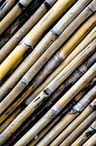 在portait视图的竹纹理 库存图片