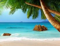 在Praslin海岛,塞舌尔群岛的Anse拉齐奥海滩 免版税库存图片
