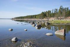 在Primorsk附近的芬兰湾,平衡可以 列宁格勒地区,俄罗斯 免版税库存照片