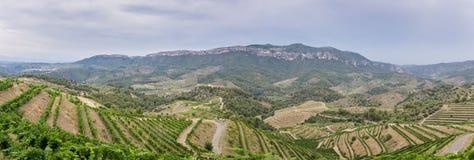 在Priorat,卡塔龙尼亚,西班牙的风雨如磐的天空 图库摄影
