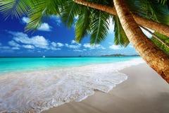 在Prtaslin海岛塞舌尔群岛的海滩 免版税库存图片