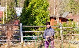 在prunning的植物的春天努力别墅的 库存照片