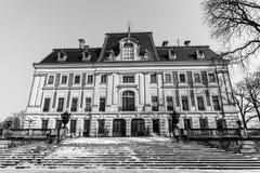 在Pszczyna的城堡 库存照片