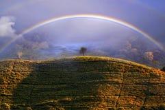 在Puncak通行证,茂物印度尼西亚的有薄雾的彩虹 免版税库存照片