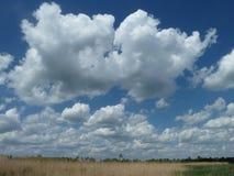 在puszta干草原的不尽的天空 库存图片