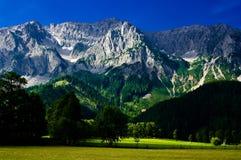 在Ramsau附近上午Dachstein镇的乡下  免版税图库摄影
