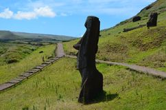在Rano Raraku火山倾斜的Moais, Rapa Nui复活节岛 库存照片