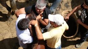 在Rapa das Bestas期间,野马在拥挤竞技场环绕了  股票录像