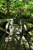 在Ravennaschlucht的Brige在德国黑森林 免版税库存照片
