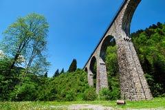 在Ravennaschlucht的Brige在德国黑森林 免版税图库摄影