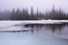 在Reflection湖Mt更加多雨的国家公园的厚实的日出雾 免版税库存照片