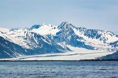 在Resurection海湾的熊冰川在阿拉斯加 免版税库存图片