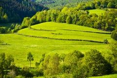 在Rhoen的绿色田园诗在巴伐利亚,德国的心脏 免版税库存照片