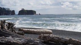 在Rialto海滩,华盛顿州,美国的漂流木头 图库摄影
