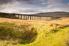 在Ribblehead的高架桥 免版税库存图片