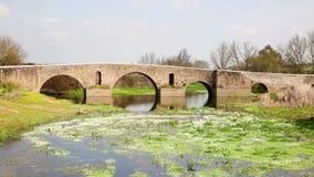 在Ribeira重创的河的罗马桥梁在Monforte镇, Portalegre,葡萄牙区  股票视频