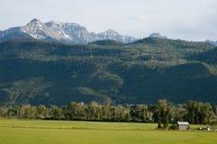 在ridgway的大农场附近的科罗拉多 免版税图库摄影