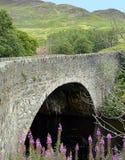 在Riiver杏仁的一般涉过的桥梁在1730年制作的 免版税库存图片