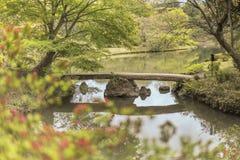 在Rikugien P池塘的日本石桥梁和花bokeh  库存照片