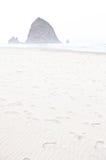 在Rockaway海滩,俄勒冈的早晨雾 免版税图库摄影