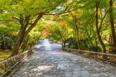 在Ryoan籍寺庙的楼梯 图库摄影