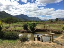 在Sabeto泥水池的第一个泥泞的水池在Nadi,斐济附近 库存图片