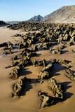 在Sagres的美丽的海滩 免版税图库摄影