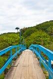 在Sahy河,圣地塞巴斯蒂昂-巴西的桥梁 免版税库存图片