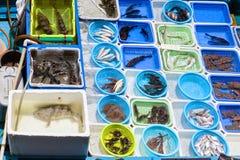 在Sai Kung,香港的浮动海鲜市场 库存照片