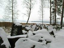 在Saimaa湖边的Mannerheim线在冬天 免版税库存图片