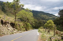 在Salento,哥伦比亚附近的Cocora谷 库存图片