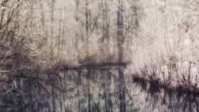 在samall河的一个冬天场面 免版税库存照片