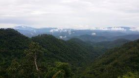 在Samerng Chiangmai泰国的绿色山 库存图片