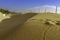 在Sampieri海滩的华美的巨大自然纯净的sandunes在西西里岛在一个夏天晴朗的大风天 免版税图库摄影