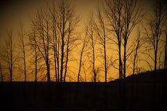 在Sandpoint的日落 免版税图库摄影