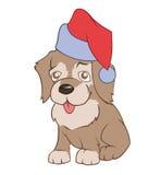 在Santa's帽子的小的小狗 免版税库存图片